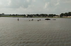 खंडवा : तालाब के खुदे गड्ढे में डूबने से तीन बच्चों की मौत