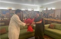 सोनिया गांधी से मिले राज ठाकरे, ईवीएम पर हुई चर्चा