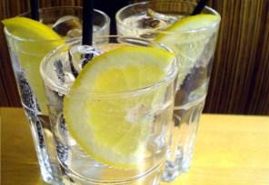 Gin tónico à antiga