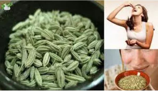 Why-is-the-food-consumed-after-eating-fennel-What-you-know