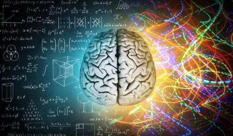 human-brain-thinking-knowledge-intelligence-evolution-development-shut