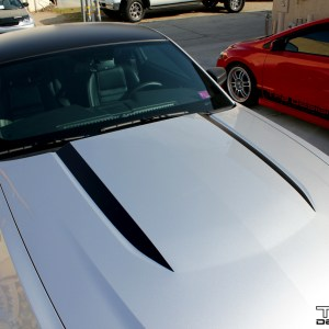Hood Stripes fits 2010-2014 Ford Mustang – Many Colors and Logos