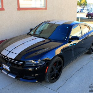 Racing Stripes for the 2015-2016 Dodge Charger -Precision Cut