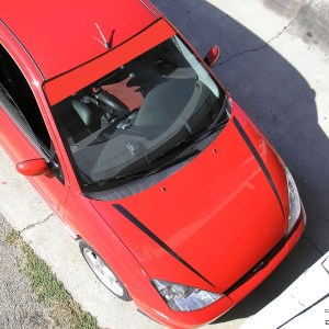 Windshield Banner for 2000-2007 Ford Focus and SVT -Many Colors!