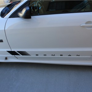 Door Decals – fits 2005-2009 Ford Mustang Saleen S281 S351