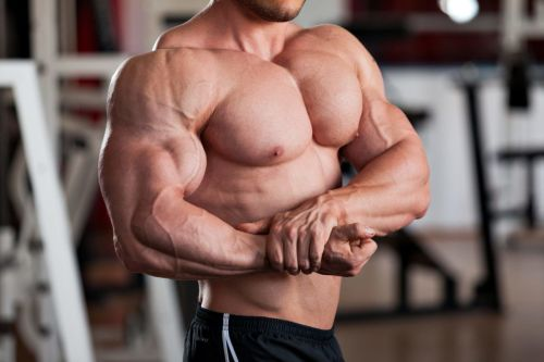 chest exercise workout program big chest