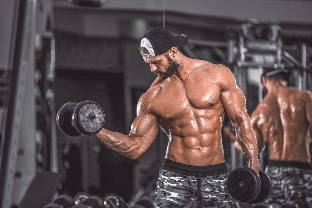 isolation lifts biceps