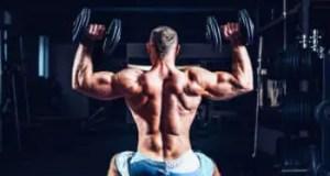 Muscle Power dumbbell shoulder press workout