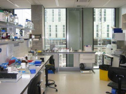 Molecular_Cell_Biology_Laboratory_-_LUMC