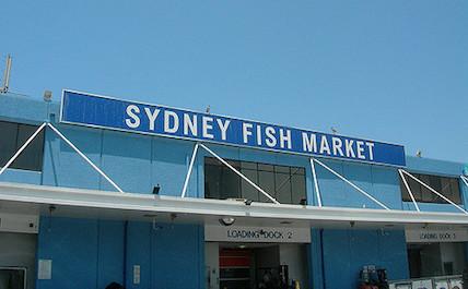 Sydney fish