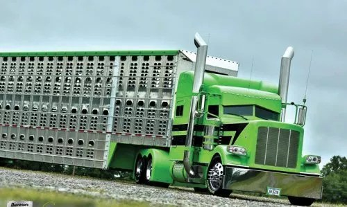 ELD exemption for ag/livestock haulers extended to June