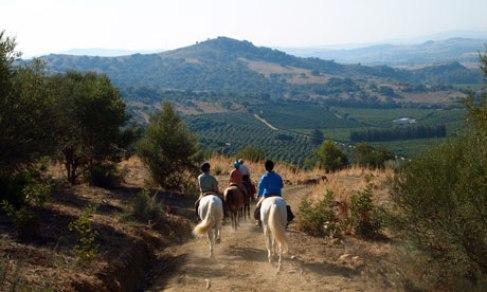 riding Andalucia - three riders