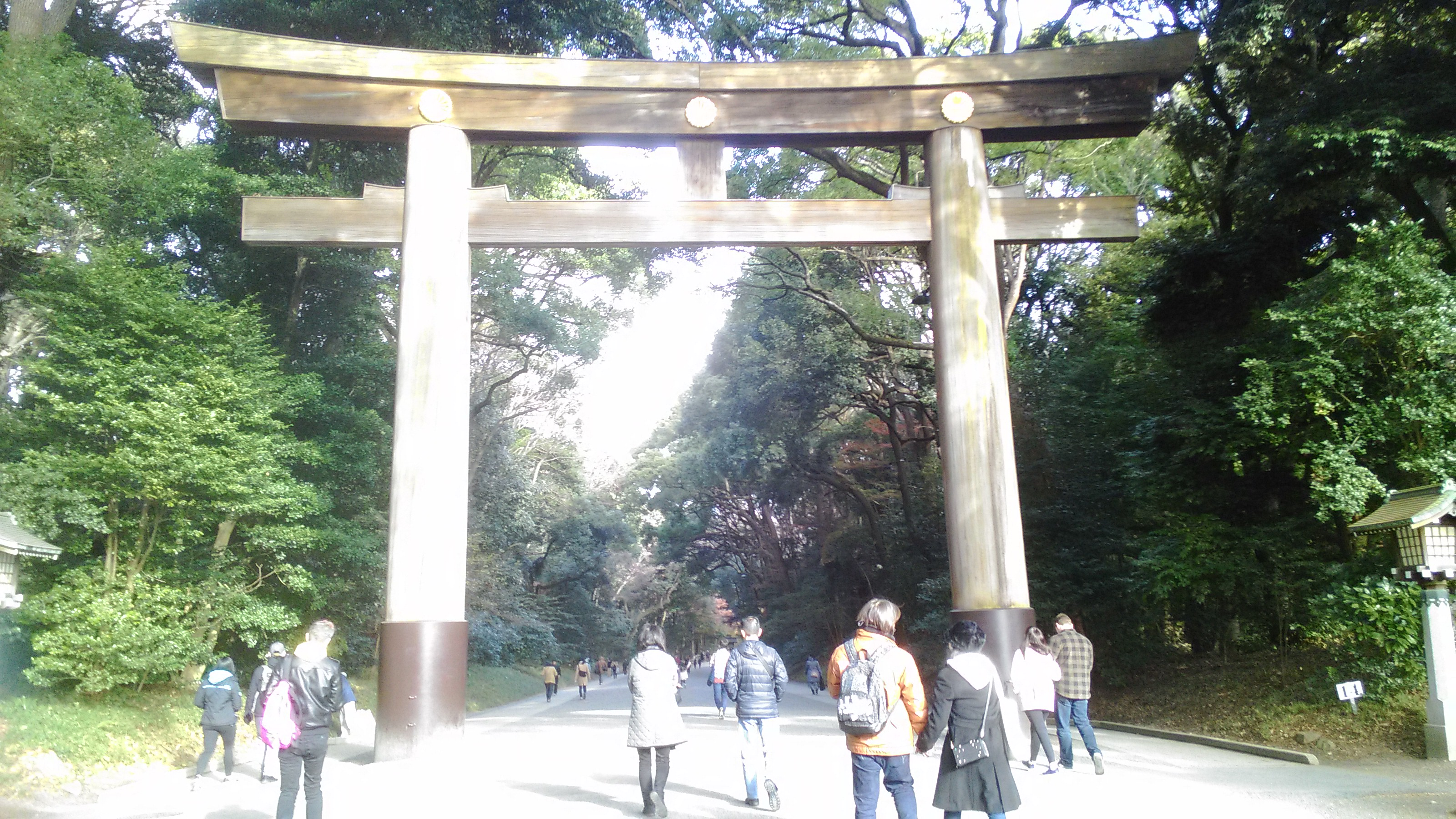 Torii, or the Shinto shrine gate