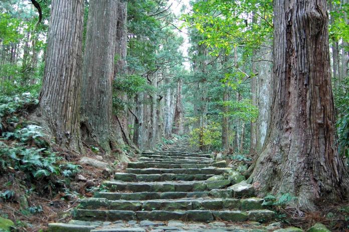 熊野古道的圖片搜尋結果