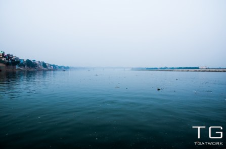 A much polluted river Ganges