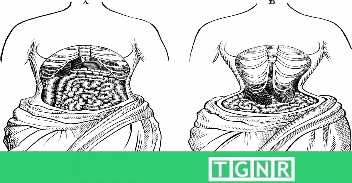 733efb2f309 5 Facts All Women Must Know Before Using A Waist Trainer Like Miss Belt