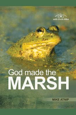 God Made the Marsh