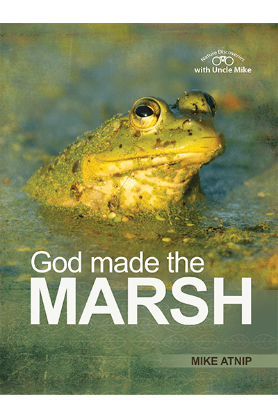 God Made the Marsh