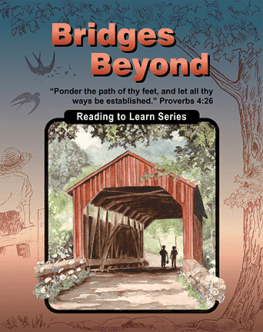 Bridges Beyond - Reading to Learn Series