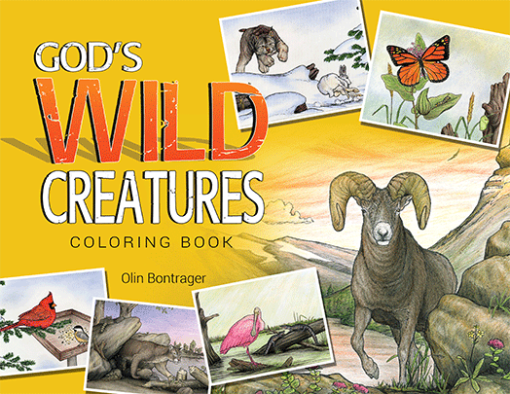 God's Wild Creatures Coloring Book