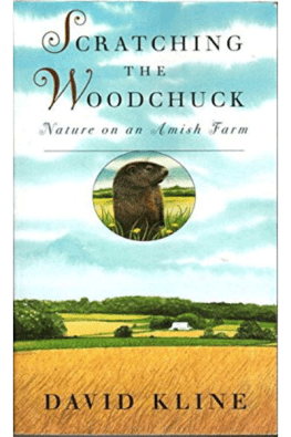 Scratching the Woodchuck