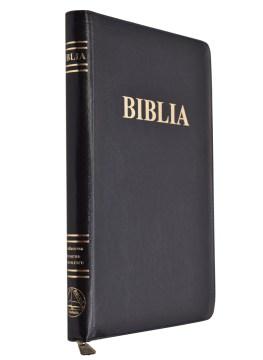 Romainian Bible 1020