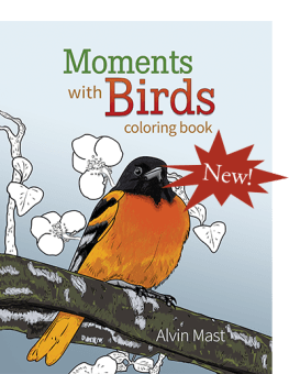 Moments with Birds coloring book