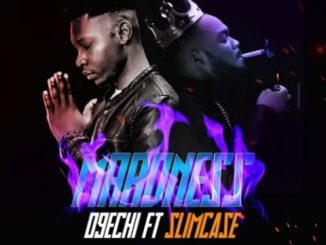 O9echi Ft. Slimcase – Maadness