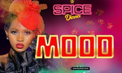 AUDIO & VIDEO: Spice Diana – Mood