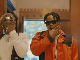 Wale Turner ft. Olamide - Bosi (official video)