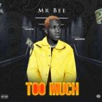 Mr Bee – Too Much