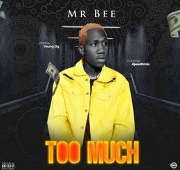Mr Bee - Too Much