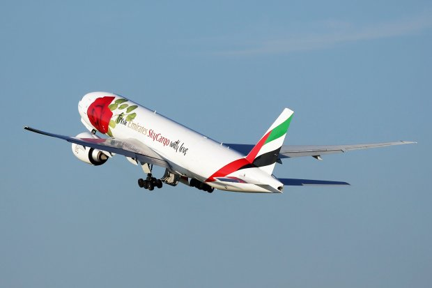 Emirates: flying Zambian roses to the world for Valentine's Day