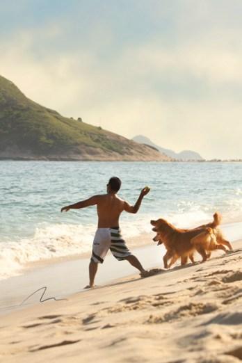 imagem homem na praia brincando com seus goldens