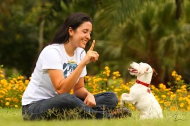 Retrato treinadora e seu obediente cão