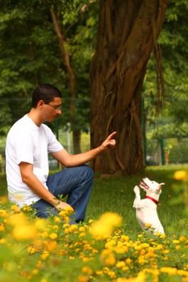 imagem adestrador e seu aluno canino