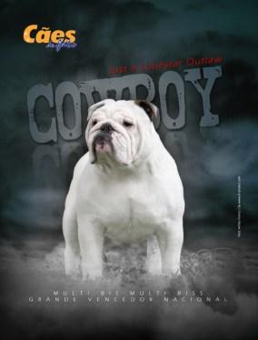 Imagem capa Cowboy CDF