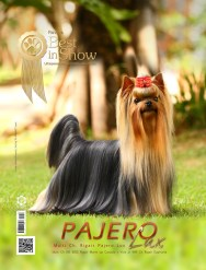 Imagem Capa Pajero revista BIS