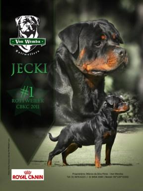 imagem propaganda Rottweiler por TH-PROJECT