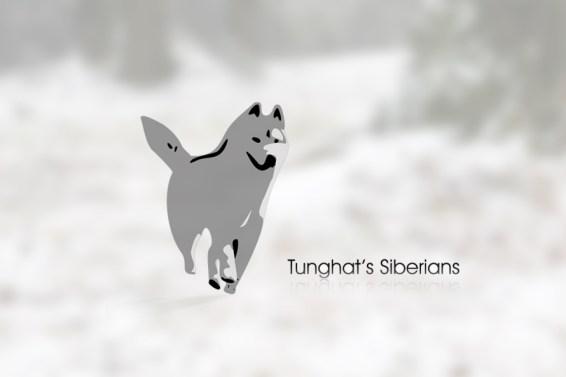 Imagem logo Tunghat's Siberians, Husky siberianos