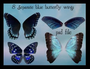 psd blue butterfly