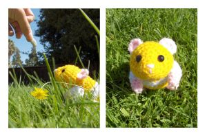 Hamster Amigurumi plus Pattern by ~Sparrow-dream