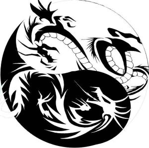 "The image ""https://i2.wp.com/th04.deviantart.net/fs40/300W/f/2009/042/b/f/dragon_yin_yang_tribal_tattoo_by_xisangelraine.jpg"" cannot be displayed, because it contains errors."