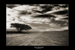 Soul Searching by `gilad
