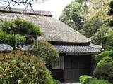 The Ninja House