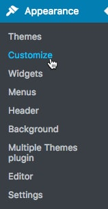 Multiple Themes-plugin6