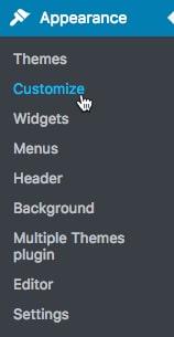MultipleThemes-plugin6