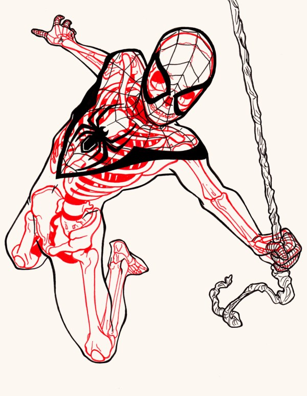 XRAY Comic Characters Spiderman by Chris Panda