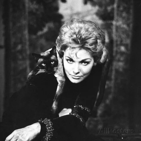 ralph-crane-movie-actress-kim-novak-with-siamese-cat-during-filming-of-bell-book-and-candle