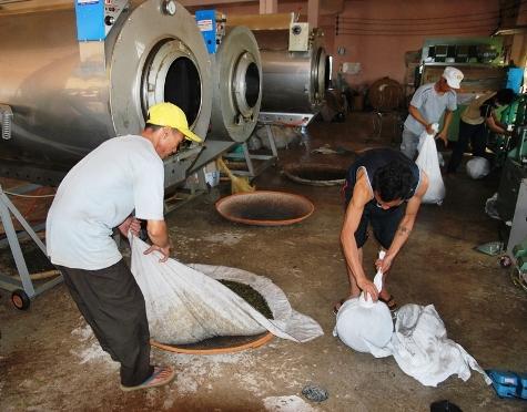 Teefabrik Doi Mae Salong: Wickeln des Kesselinhalts zu einem Ballen